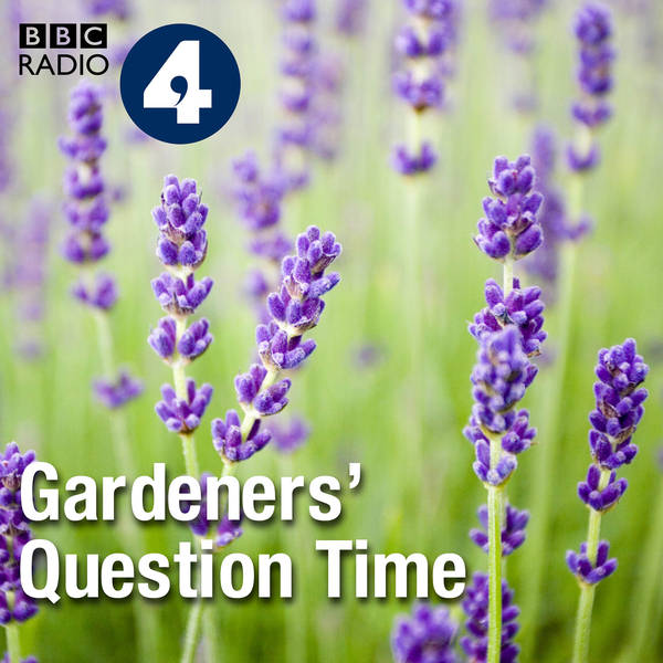 Gardeners' Question Time image