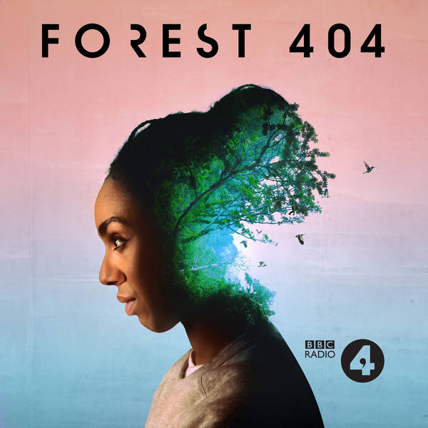 Forest 404 image