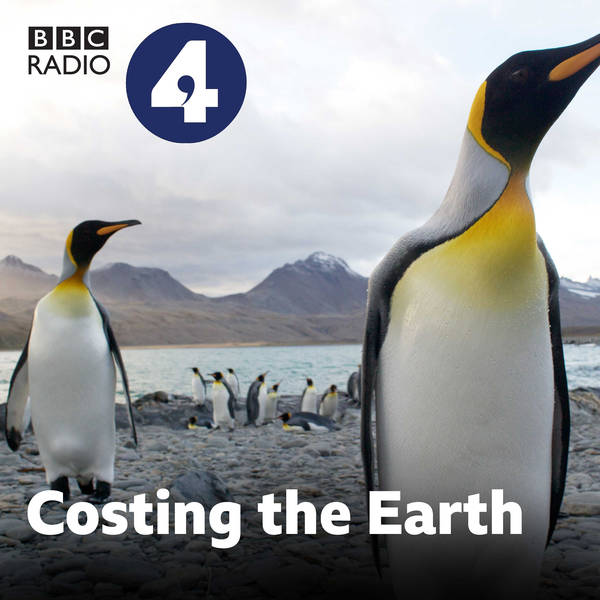 Costing the Earth image