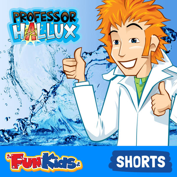 Where does water come from? (Hallux's Hydration Helpdesk)