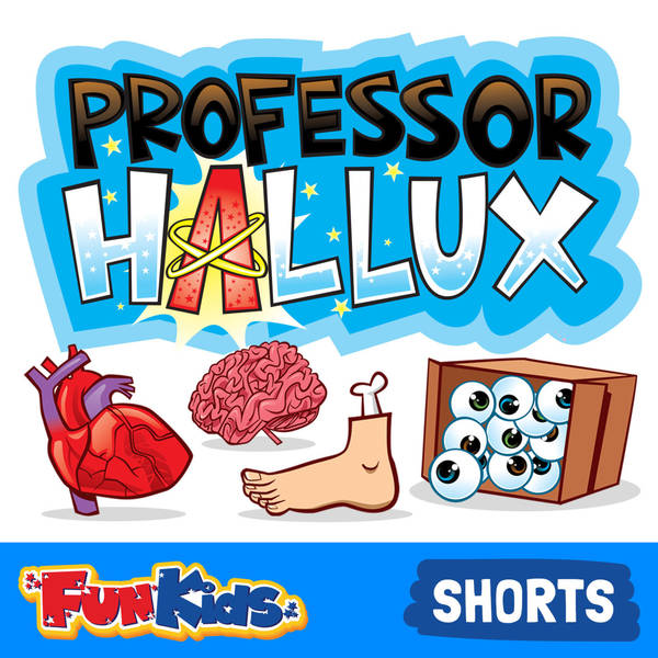 The Smallest Bone of All (Hallux's Hearing Helpdesk)
