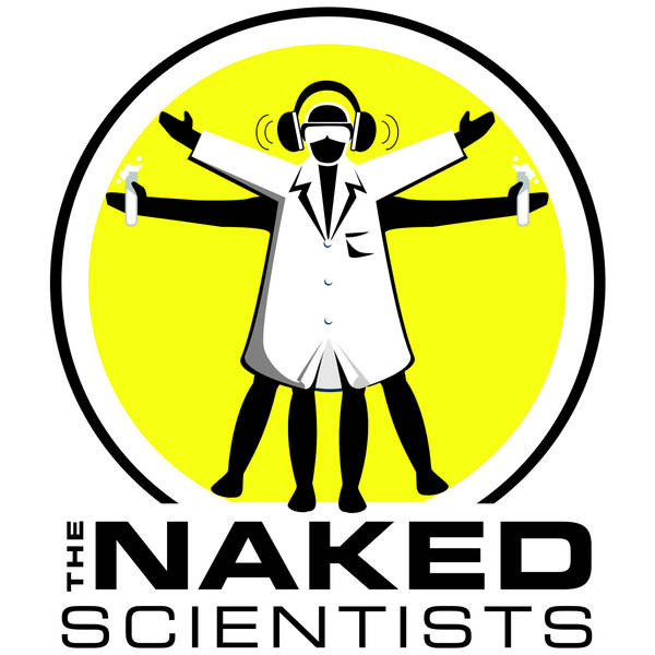 The Naked Scientists Podcast image