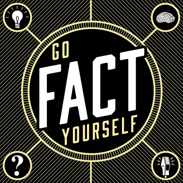 Go Fact Yourself image