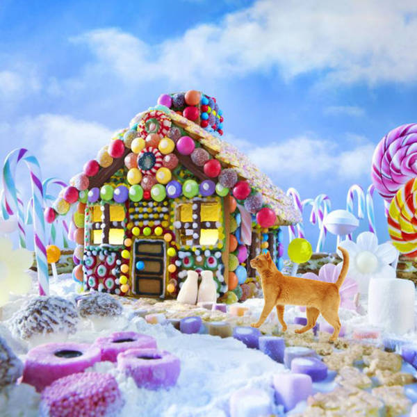 What if a spotted cat named Sniff ran away so that he could live in a house of candy?