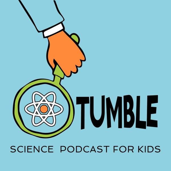 What if there was no moon? (w/ Tumble Science Podcast)