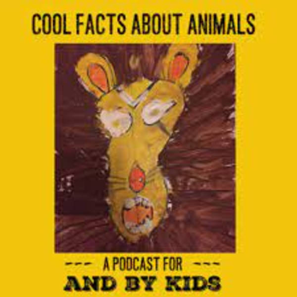 A Dracomax Q&A (on Cool Facts About Animals)