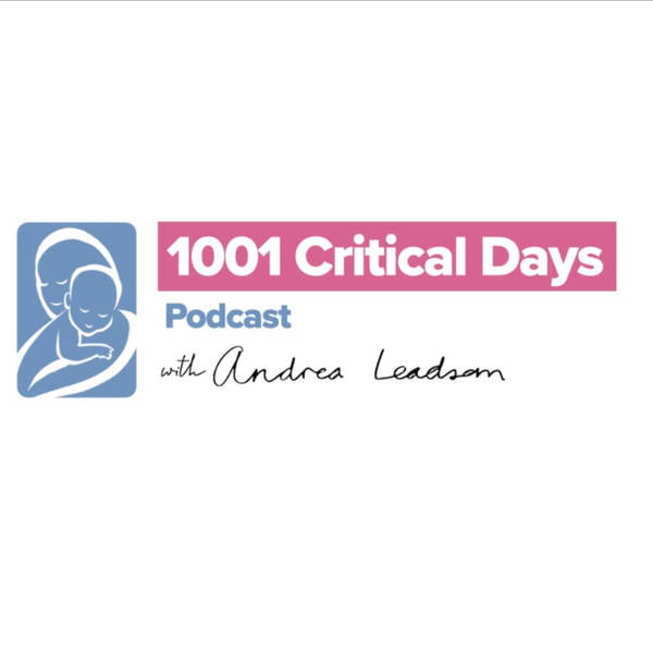 The 1001 Critical Days Podcast with Andrea Leadsom MP image