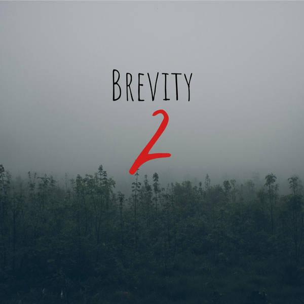 31: Brevity 2