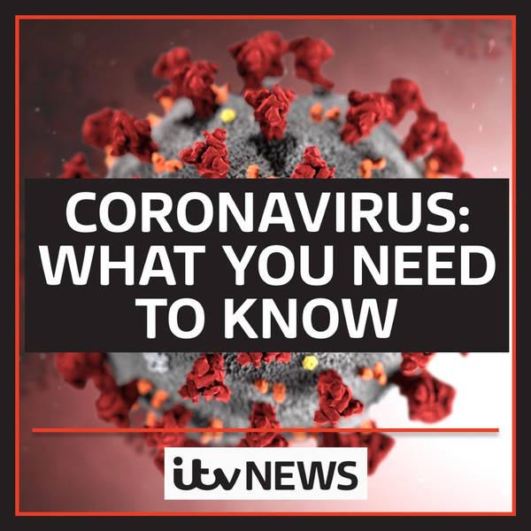 Coronavirus: What You Need To Know image