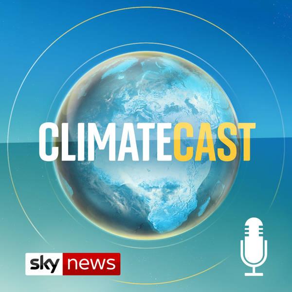 ClimateCast image