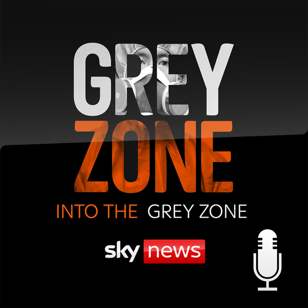 Into The Grey Zone image