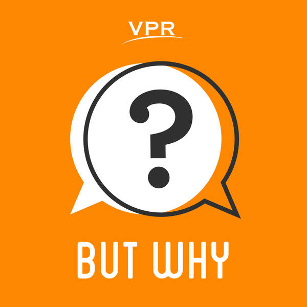 Circle Round Presents 'But Why'