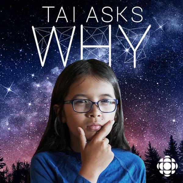 Circle Round Presents: 'Tai Asks Why'