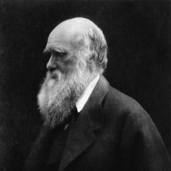 The Tale of Darwin and the Beagle with Áki Jarl Láruson
