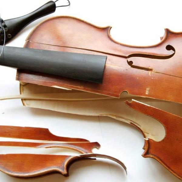 Domestic Violins