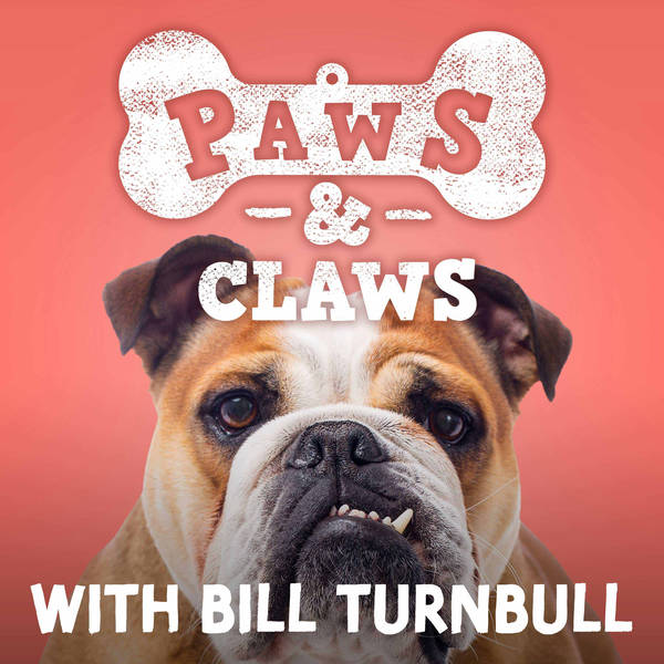 Paws and Claws with Bill Turnbull image