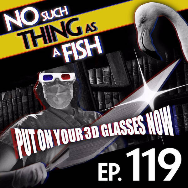 119: No Such Thing As 4D Surgery
