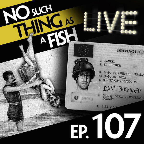107: No Such Thing As Gorillas On The Beach