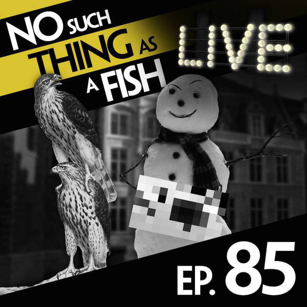 85: No Such Thing As Michelangelo's Snowman