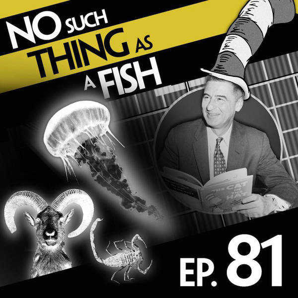 81: No Such Thing As Jellyfish Jelly
