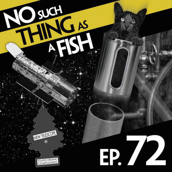 72: No Such Thing As A Bacon Telescope