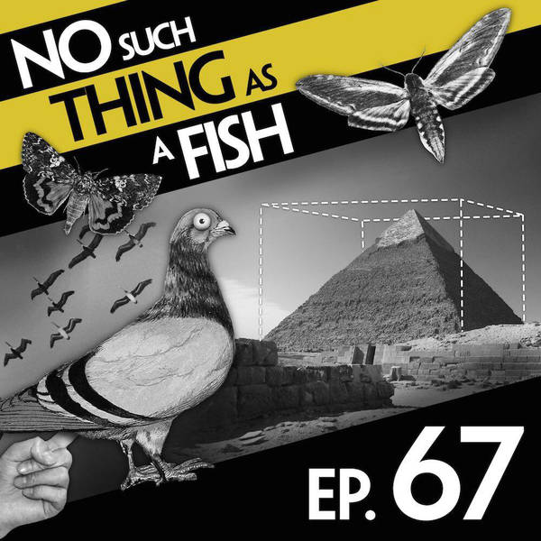 67: No Such Thing As The Hoo-Hah Monologues