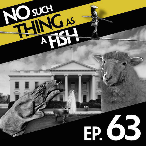 63: No Such Thing As An Anti-German Sock