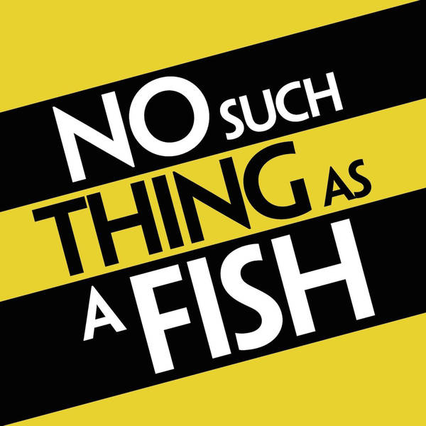 No Such Thing As A Fish image