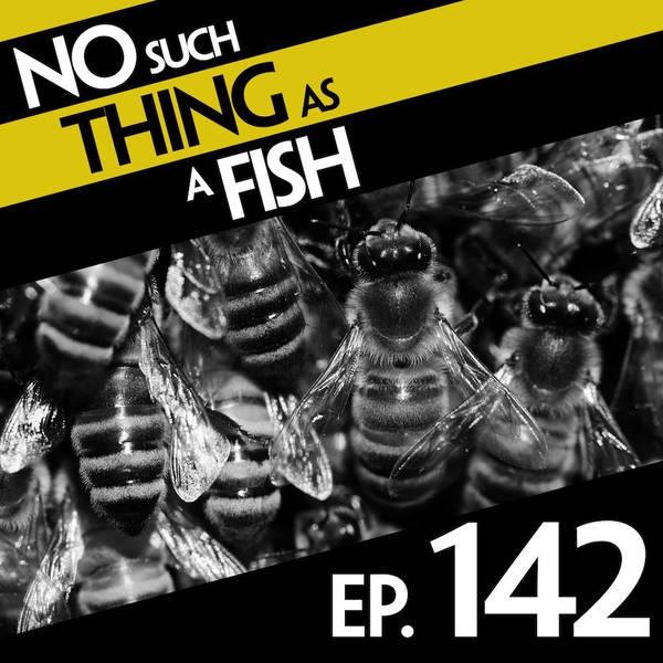 142: No Such Thing As Edward Binbag-Hands