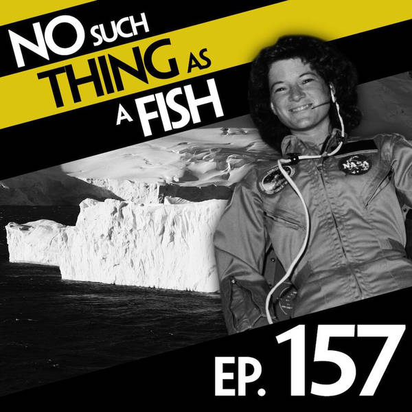157: No Such Thing As High-Fiving The Beatles