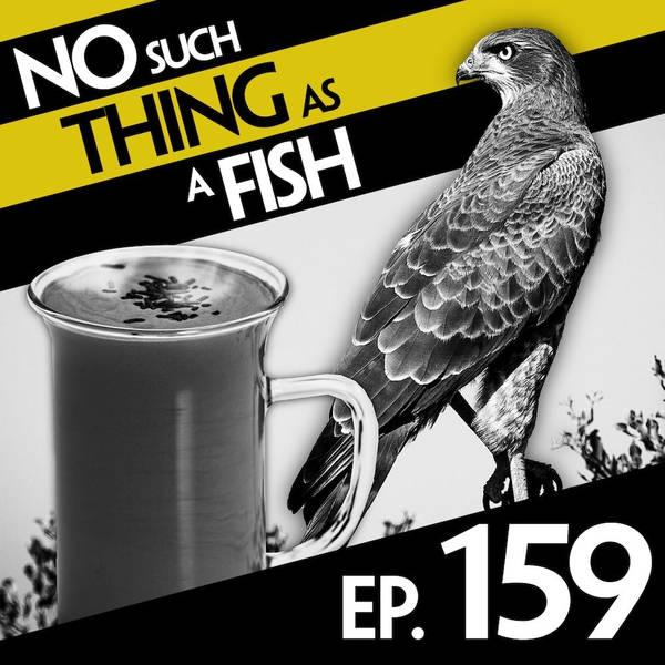 159: No Such Thing As An Edible Jockey