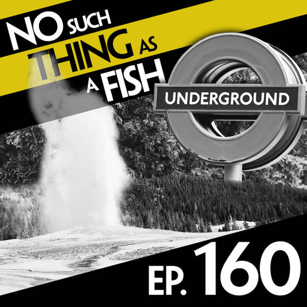 160: No Such Thing As A Sausage Jacuzzi