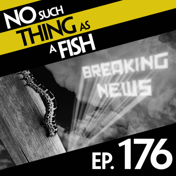 176: No Such Thing As A Communist Caterpillar