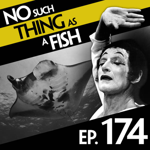 174: No Such Thing As A Manta Ray