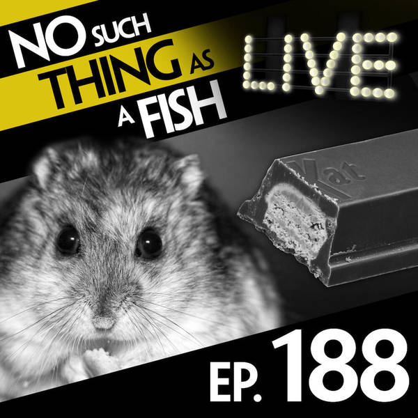 188: No Such Thing As A Mouth-Propelled Grenade Launcher