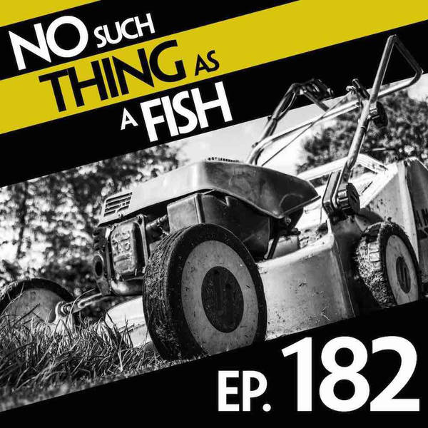 182: No Such Thing As An Auction For Auction School