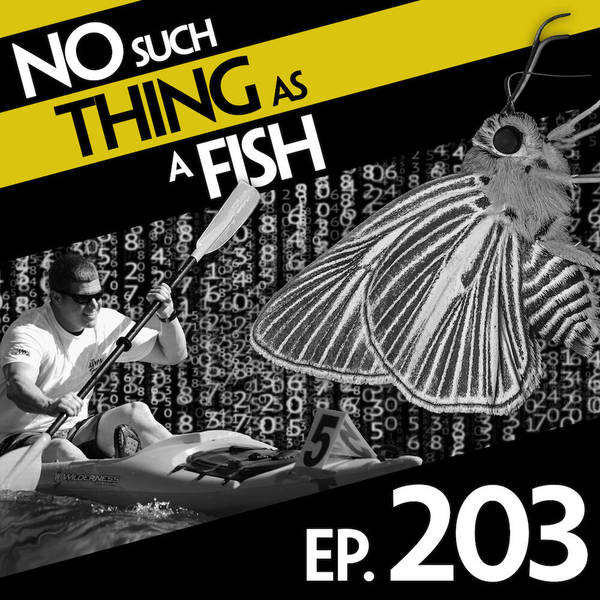 203: No Such Thing As A Muscular Butterfly