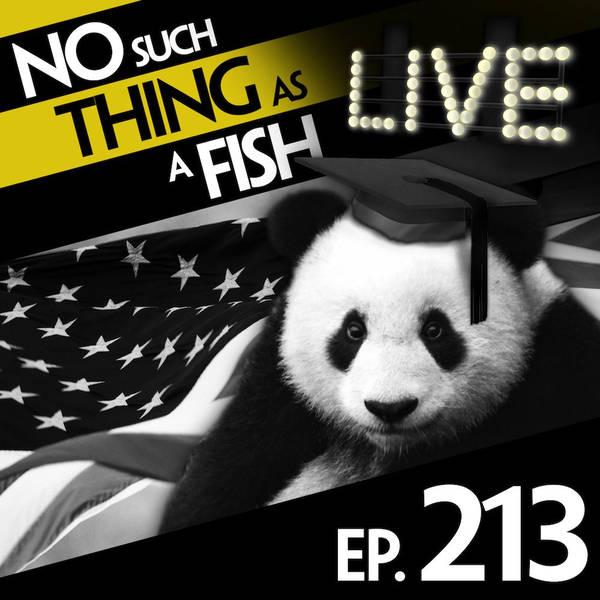 213: No Such Thing As Panda Gladiators