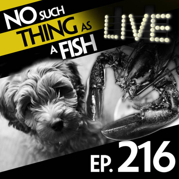 216: No Such Thing As A Lobster War