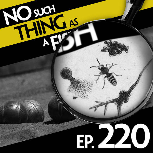 220: No Such Thing As A Million Dots