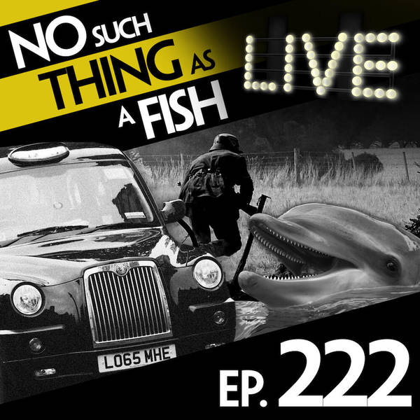 222: No Such Thing As A Warmongering Pigeon