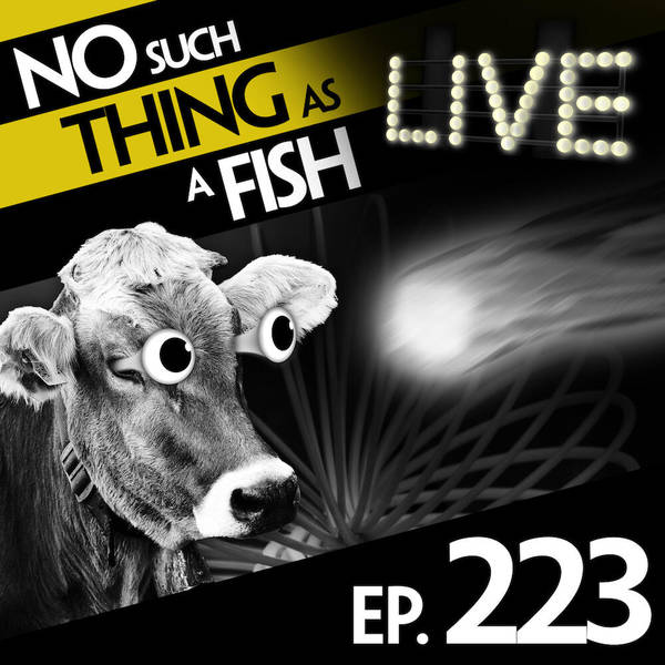 223: No Such Thing As A Worthless Doorstop