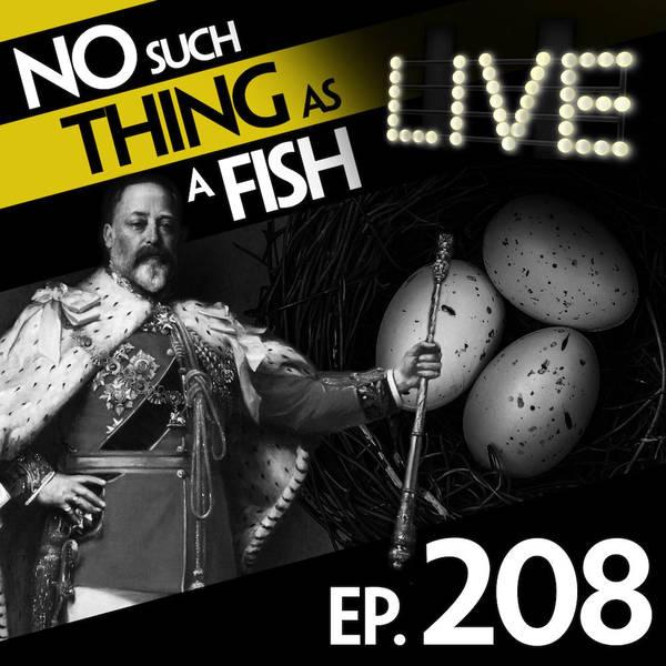 208: No Such Thing As A Female Egg Thief