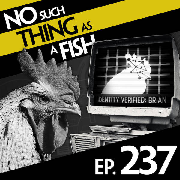 237: No Such Thing As A Closed-Minded Tortoise