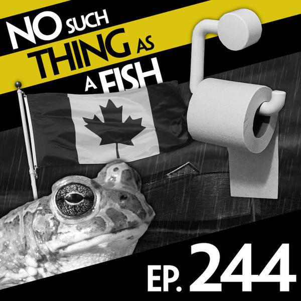 244: No Such Thing As A Fishman