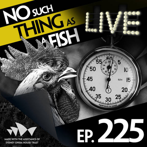 225: No Such Thing As An Interesting Riddle