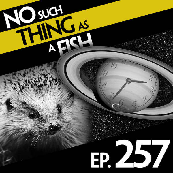 257: No Such Thing As A Squilkman