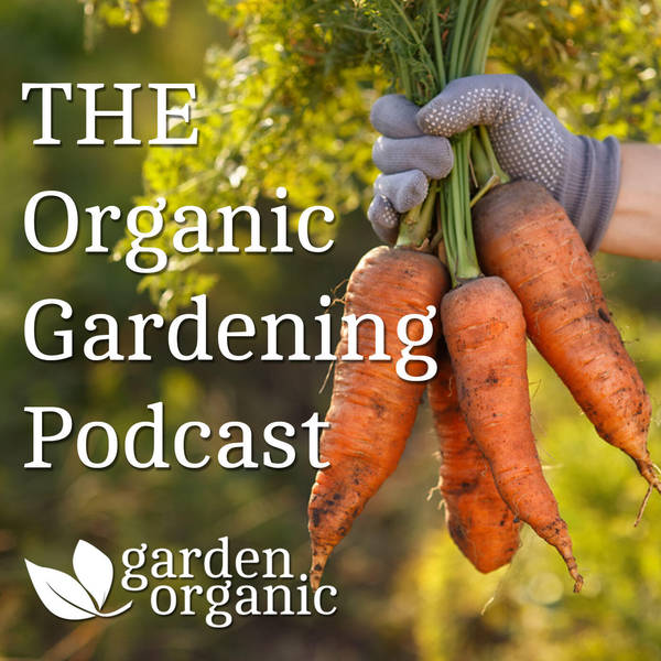 The Organic Gardening Podcast image