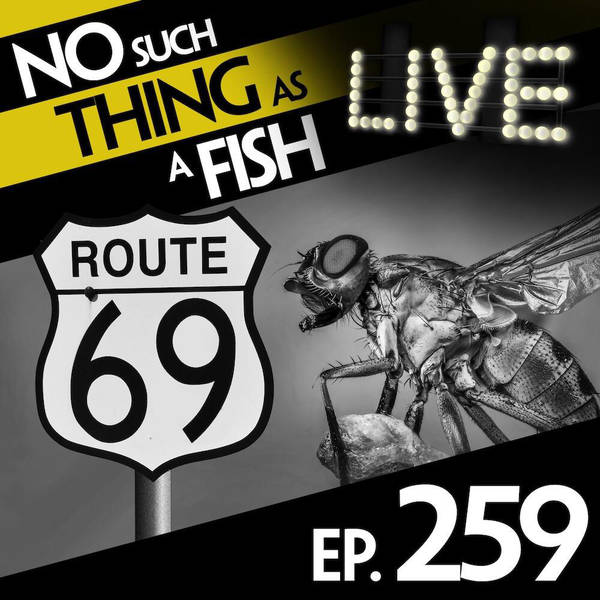 259: No Such Thing As Flyagra