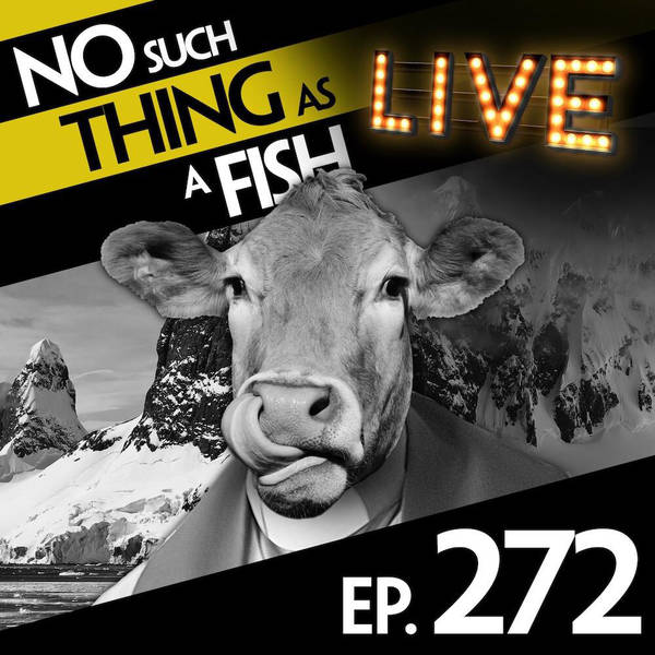 272: No Such Thing As A  Non-Judgemental Herring